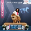 BEST_OF_BREED_7112_WORLD_DOG_SHOW_2017_Kynoweb_Kynoweb-Ernst-von-Scheven_20171110_20_01_13